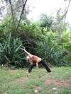Yoga19