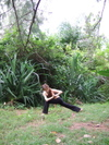 Yoga20